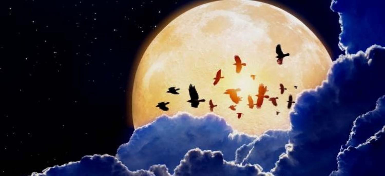 A Szuperújhold október 16-án felkészít minket azokra a változásokra, amelyektől annyira félt a lelkünk