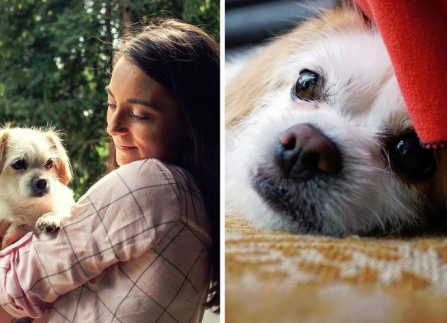 Szörnyű tragédia érte a magyar énekesnő: a szeme láttára ölték meg kiskutyáját