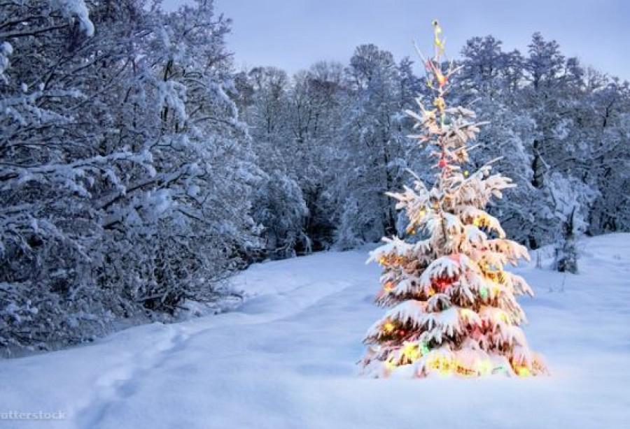 Sokkoló, amit a meteorológus állított: ezért ne számítsunk fehér karácsonyra