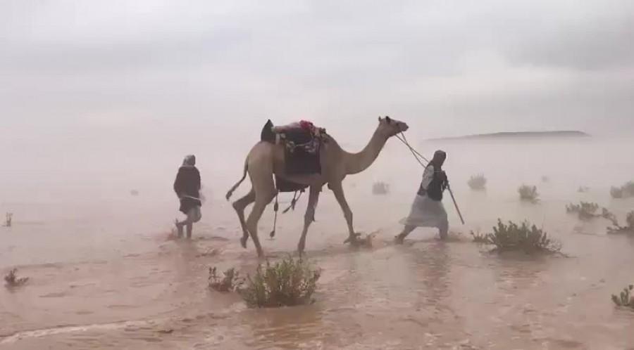 Özönvíz szerű eső árasztotta el a szaúdi sivatagot