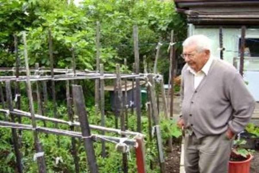 Egy idős bácsi fel akarta ásni a kertjét, de a fia, aki segíthetett volna, börtönben volt