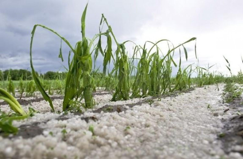 Jéggel és erős széllel érkeznek az újabb esőzések