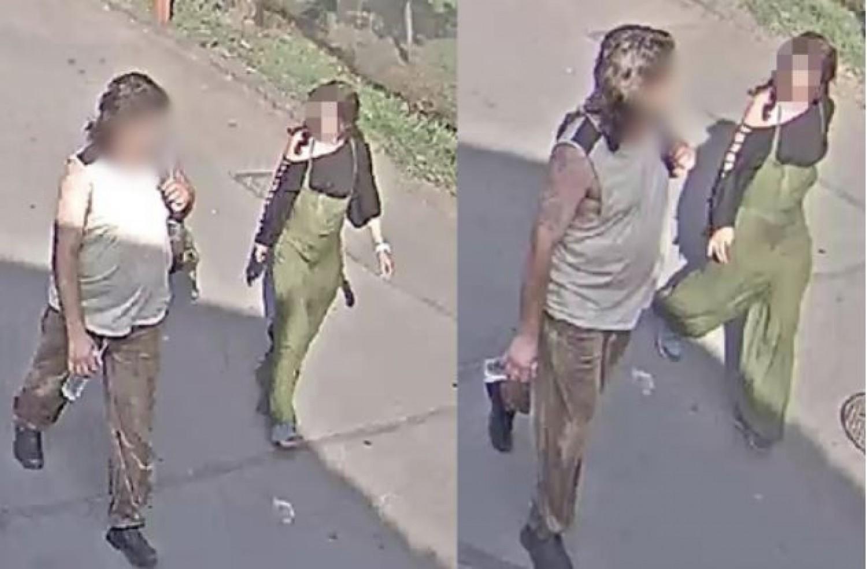 Elfogták a nőt, aki kővel vert halálra egy teknőst a budapesti állatkertben