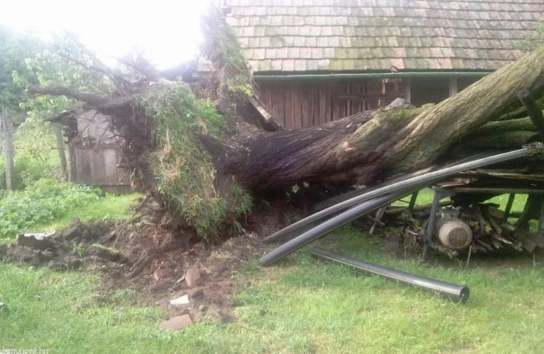 Kicsavart fák, leszakított elektromos vezetékek - hatalmas pusztítással vonult végig az országon a vihar