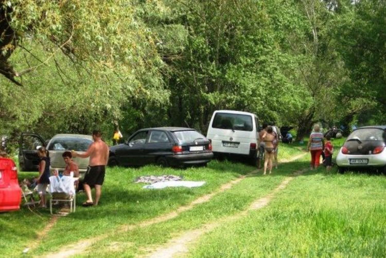 Piknikezési tilalom az erdőkben a sertéspestis veszélye miatt