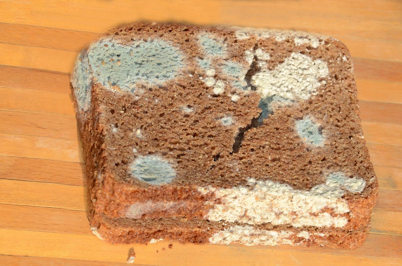 Egy trükk, hogy friss maradjon, és ne penészesedjen be a szeletelt kenyér
