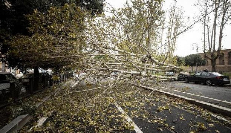 A Katasztrófavédelem figyelmeztet: Éjjel elér bennünket a Ciara viharciklon