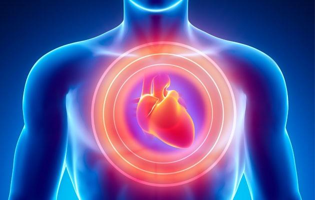 A lisztéria baktérium megtámadja a szívet!
