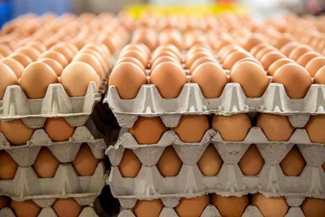 FIGYELEM! Szalmonellás lengyel tojás került a magyar boltokba!