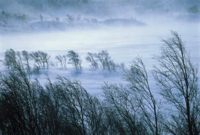 A meteorológusok figyelmeztetnek: Viharos szél és felhőszakadás jön!