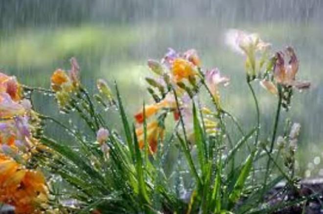 Nyakunkon a kiadós eső és a lehűlés! Mutatjuk melyik nap lesz a legcsapadékosabb!
