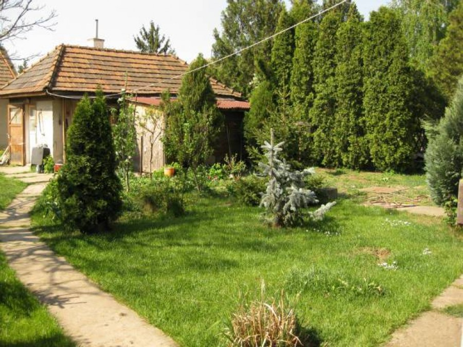 Ha kertes házad van figyelj erre! Óriási bírságot róhatnak ki.