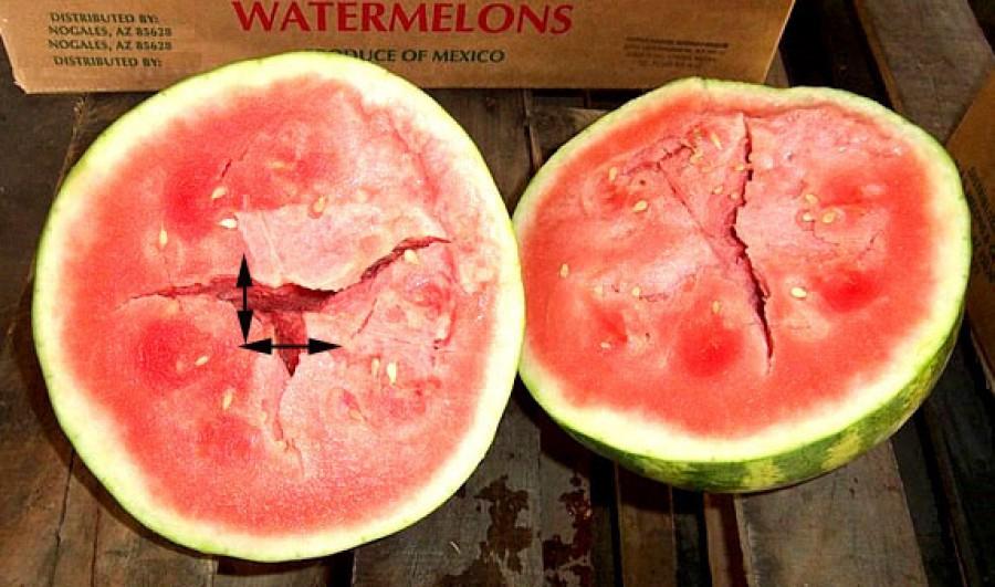 Soha ne egyél ilyen görögdinnyét!