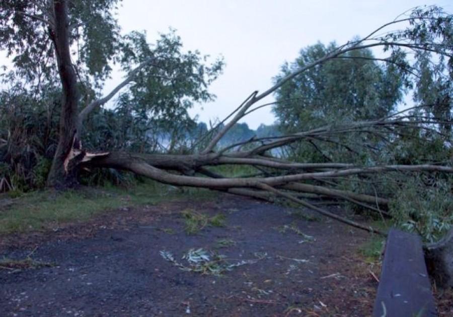 Az ország nagy részére riasztást adtak ki a hatalmas széllökések miatt