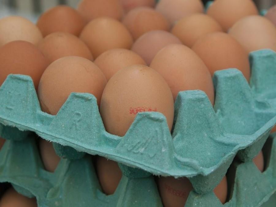 Drasztikus áremelkedés - Tojás fronton kezd nagyon durvává válni a helyzet